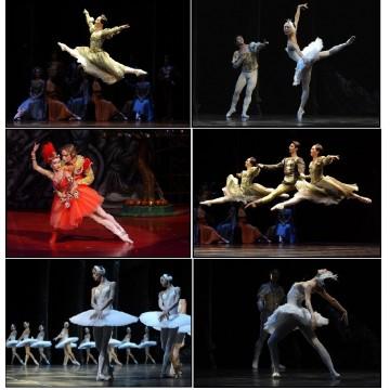 6 cartes postales danse